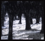 Janet Austin, Black Trees With Snow